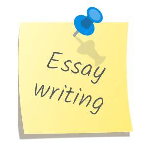 Professional Essay Writing Service Essay Writer